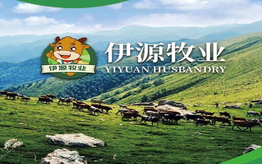 beplay体育官方网伊源牧业有限公司